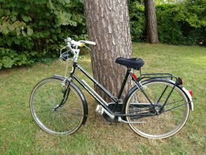elektrisches-Fahrrad