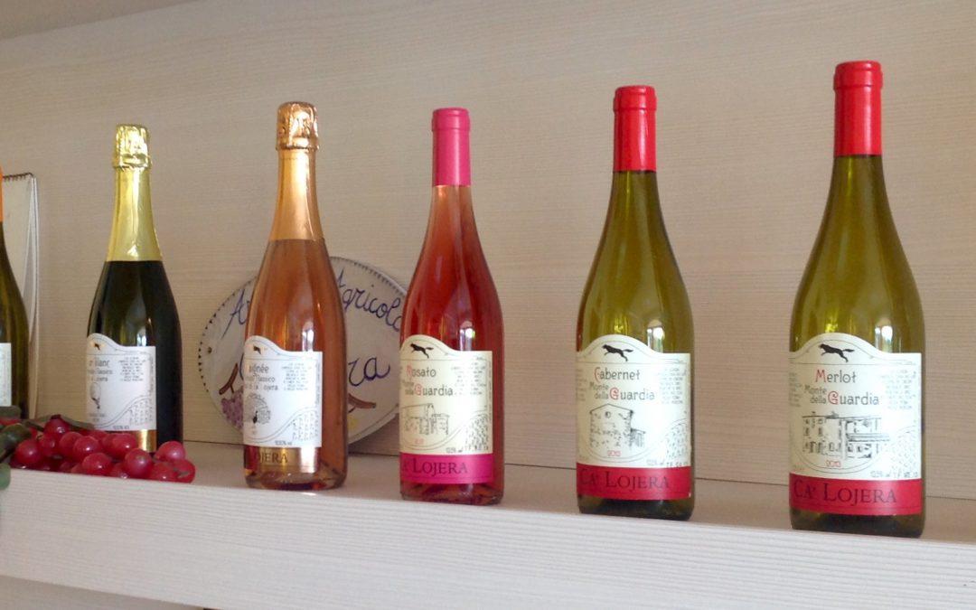 Lugana: Der edle Weißwein vom Gardasee
