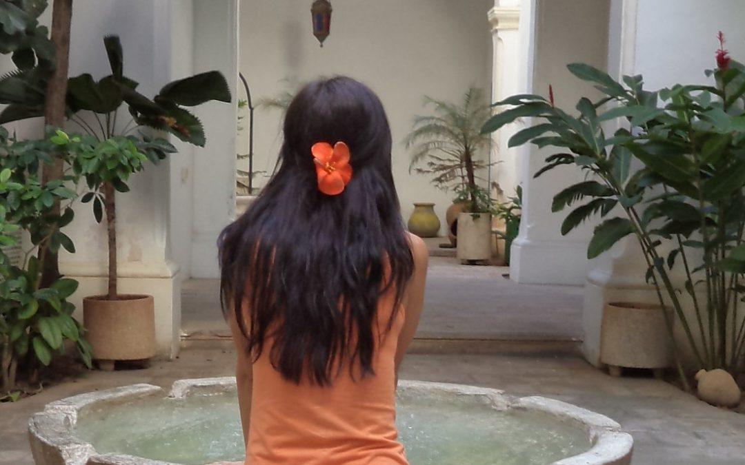Natürliche Haarkuren Teil II: Tipps und Rezepte