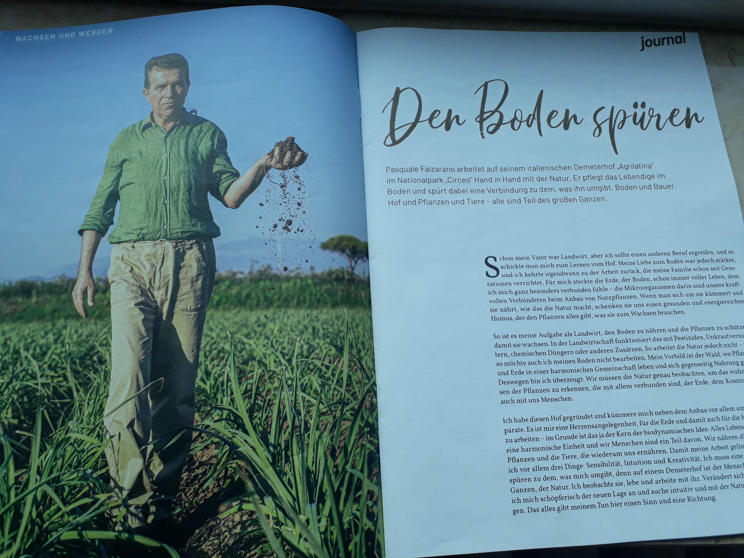 Wenn nachhaltiges Netzwerken Früchte trägt: Übersetzen und Texten für Demeter und Yool